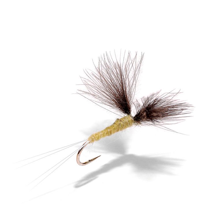 Mouche FMF Cul de canard wing olive PP165